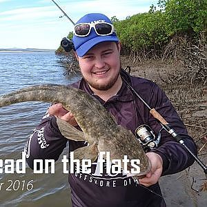FLATHEAD ON THE FLATS- FT [Palms Molla, Gulp minnow, Stella FE, Sunline SuperPE] - YouTube